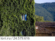 Купить «France, Provence, Vaucluse, Bonnieux, house, covered, wild wine, summer, south Eastern France, village, place, local view, houses, buildings, residential...», фото № 24579616, снято 9 апреля 2008 г. (c) mauritius images / Фотобанк Лори