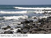 Купить «Spain, Canary islands, Lanzarote, Playa de Janubio, stones, waves,», фото № 24580904, снято 2 февраля 2010 г. (c) mauritius images / Фотобанк Лори
