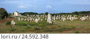 Купить «France, Brittany, Carnac, stele field, menhirs, France, Morbihan, monoliths, nature, archeology, place of interest, scenery, tourism, stones, alingnments, monument, memory,», фото № 24592348, снято 15 сентября 2010 г. (c) mauritius images / Фотобанк Лори