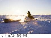 Купить «Canada, Manitoba, snow surface, man, snowmobile, evening light,», фото № 24593908, снято 15 августа 2018 г. (c) mauritius images / Фотобанк Лори