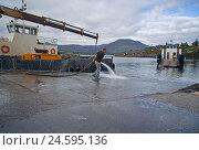 Купить «Ireland, Castletownbere, ferry port, worker,», фото № 24595136, снято 15 сентября 2009 г. (c) mauritius images / Фотобанк Лори