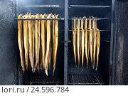 Купить «Räucheraal, smoked eel, eel, fish, kiln, vapour, smoke, queue-shaped, burning incense,», фото № 24596784, снято 20 июля 2018 г. (c) mauritius images / Фотобанк Лори