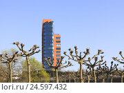Купить «Germany, Düsseldorf, office building and plane trees in the media harbour,», фото № 24597432, снято 25 мая 2019 г. (c) mauritius images / Фотобанк Лори