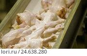 Купить «Poultry meat during production process», видеоролик № 24638280, снято 30 сентября 2016 г. (c) Илья Насакин / Фотобанк Лори