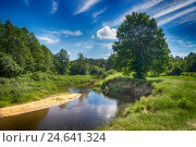 Река Ислочь. Стоковое фото, фотограф Дмитрий Голуб / Фотобанк Лори