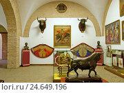 Купить «Spain, Andalusia, Seville, bullfight museum,», фото № 24649196, снято 19 августа 2018 г. (c) mauritius images / Фотобанк Лори