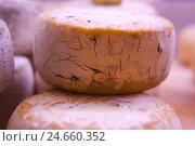 Купить «Cheese loaf, cheese, loaf, complete, lacteal product, organic product, organic, rind, cracks,», фото № 24660352, снято 27 апреля 2018 г. (c) mauritius images / Фотобанк Лори