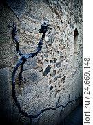 Купить «Poblet Monastery, part of the Cistercian route 'Ruta del Císter', province Tarragona, Catalonia, Spain,», фото № 24669148, снято 23 января 2018 г. (c) mauritius images / Фотобанк Лори