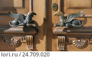 Купить «Дверные ручки в виде грифонов на дверях художественного музея в Ярославле», фото № 24709020, снято 11 апреля 2015 г. (c) Николай Белавин / Фотобанк Лори
