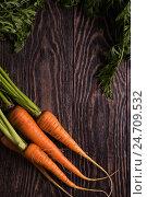 Купить «Freshly grown carrots», фото № 24709532, снято 17 июля 2016 г. (c) Jan Jack Russo Media / Фотобанк Лори
