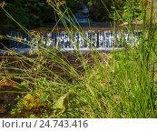 Ручей с порогами течет вдоль дороги, ведущей к водопаду  в карпатских горах (2014 год). Стоковое фото, фотограф Игорь Кириленко / Фотобанк Лори