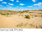 Купить «Пустынный пейзаж в летний день», фото № 24771912, снято 13 июля 2015 г. (c) Валерий Смирнов / Фотобанк Лори