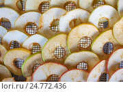 Купить «Яблоки в сушилке», фото № 24772436, снято 28 августа 2016 г. (c) Александр Романов / Фотобанк Лори