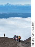 Группа туристов совершает восхождение на Авачинский вулкан, фото № 24773804, снято 7 августа 2014 г. (c) А. А. Пирагис / Фотобанк Лори