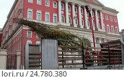 Посадка деревьев на Тверской улице в Москве, 29 октября 2016. Стоковое видео, видеограф Nadya S. / Фотобанк Лори