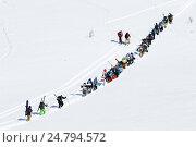 Купить «Группа горнолыжников и сноубордистов взбирается на гору для фрирайда», фото № 24794572, снято 9 марта 2014 г. (c) А. А. Пирагис / Фотобанк Лори