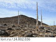 Купить «Безжизненная земля», фото № 24802036, снято 21 мая 2016 г. (c) Валерий Александрович / Фотобанк Лори
