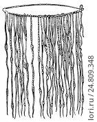 Купить «Кипу - шнуры с узлами для счета. Искусство и письменность. Перу», иллюстрация № 24809348 (c) Макаров Алексей / Фотобанк Лори
