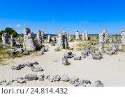 Купить «Природное явление Побитые камни, известный как Каменный лес и Dikilitash недалеко от Варны, Болгария», фото № 24814432, снято 13 июля 2016 г. (c) Николай Коржов / Фотобанк Лори