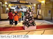 Купить «Новогодняя елка-модница от знаменитого магазина Articoli by Bosco, украшенная сиреневыми шарами, в ГУМе в Москве», эксклюзивное фото № 24817256, снято 30 ноября 2016 г. (c) lana1501 / Фотобанк Лори
