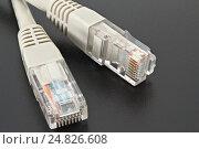 Купить «Stacked macro of ethernet cable on black background», фото № 24826608, снято 20 сентября 2018 г. (c) Александр Якимов / Фотобанк Лори