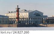 Санкт-Петербург, здание Биржи и Ростральная колонна на Стрелке Васильевского острова (2017 год). Стоковое фото, фотограф Семёнов Марк / Фотобанк Лори