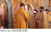 Купить «Рождественская литургия в Тихвинском храме Коломны, 2017 год», эксклюзивный видеоролик № 24830636, снято 8 января 2017 г. (c) Дмитрий Неумоин / Фотобанк Лори