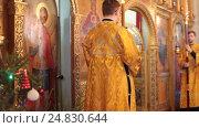 Купить «Рождественская литургия в Тихвинском храме Коломны, 2017 год», эксклюзивный видеоролик № 24830644, снято 8 января 2017 г. (c) Дмитрий Неумоин / Фотобанк Лори