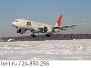 """Купить «Посадка """"Боинга 777"""" авиакомпании JAL в аэропорту Шереметьево зимой», фото № 24850256, снято 26 февраля 2007 г. (c) Air Nemo / Фотобанк Лори"""