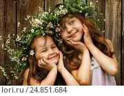 Девочки в венке из ромашек. Стоковое фото, фотограф Марина Володько / Фотобанк Лори