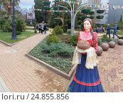 Купить «Прогулочная аллея в Сочи, фигура девушки казачки с караваем, зимние клумбы», фото № 24855856, снято 14 декабря 2016 г. (c) DiS / Фотобанк Лори