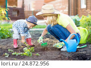 Купить «Kid and mother planting strawberry seedling into fertile soil outside in garden», фото № 24872956, снято 3 сентября 2016 г. (c) Оксана Кузьмина / Фотобанк Лори