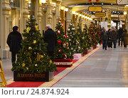 Купить «Новогодний лес из нарядных дизайнерских елок в легендарном ГУМе в Москве», эксклюзивное фото № 24874924, снято 11 января 2017 г. (c) lana1501 / Фотобанк Лори