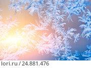 Купить «Frosty patterns on glass. Winter background.», фото № 24881476, снято 9 декабря 2016 г. (c) Сергей Лабутин / Фотобанк Лори