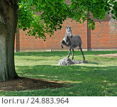 Купить «Colby College в городе Waterville, штат Maine, США. Статуя единорога в парке», фото № 24883964, снято 25 июля 2016 г. (c) Валерия Попова / Фотобанк Лори