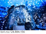 Купить «Ночной вид на зимний лес с деревьями необычной формы», фото № 24884156, снято 14 марта 2015 г. (c) Евгений Ткачёв / Фотобанк Лори