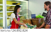 Купить «Female staff assisting man in selecting fresh vegetables», видеоролик № 24892824, снято 21 октября 2018 г. (c) Wavebreak Media / Фотобанк Лори