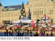 Купить «Ярмарка ГУМ-Каток и Новогодняя елка на Красной площади в Москве», эксклюзивное фото № 24893456, снято 11 января 2017 г. (c) lana1501 / Фотобанк Лори