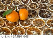 Апельсиновые ломтики и целые мандарины. Стоковое фото, фотограф Беляева Юлия / Фотобанк Лори