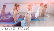 Купить «Side view of people performing yoga», фото № 24917280, снято 23 мая 2019 г. (c) Wavebreak Media / Фотобанк Лори