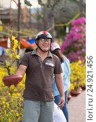 Купить «Happy Vietnamese man with hoa mai - apricot blossom on Tet Eve», фото № 24921456, снято 6 февраля 2016 г. (c) Александр Подшивалов / Фотобанк Лори
