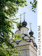 Domes of St. Antipy Church, Russia, Suzdal (2014 год). Стоковое фото, фотограф Денис Фоломеев / Фотобанк Лори