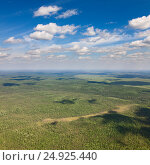 View of the northern forest from above. Стоковое фото, фотограф Владимир Мельников / Фотобанк Лори
