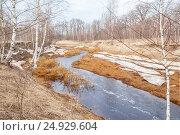 Лесная река в весенний разлив. Стоковое фото, фотограф Дмитрий Тищенко / Фотобанк Лори