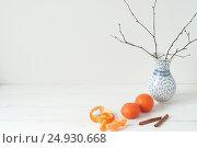 Купить «Minimal elegant composition with tangerines and vase», фото № 24930668, снято 13 декабря 2018 г. (c) Екатерина Рыбина / Фотобанк Лори