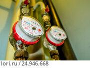 Купить «Приборы учета потребления воды», фото № 24946668, снято 29 октября 2012 г. (c) Сергеев Валерий / Фотобанк Лори