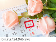 Купить «St Valentines day background - roses of light peach color over the calendar», фото № 24946976, снято 23 января 2017 г. (c) Зезелина Марина / Фотобанк Лори