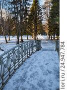 Купить «Гатчинский парк зимой», фото № 24947784, снято 21 января 2017 г. (c) Юлия Бабкина / Фотобанк Лори