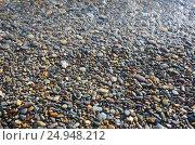 Купить «Морская галька. Крым, Яшмовый пляж на мысе Фиолент», фото № 24948212, снято 13 сентября 2016 г. (c) Ирина Носова / Фотобанк Лори