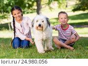 Купить «Siblings sitting with their pet dog in park», фото № 24980056, снято 10 ноября 2016 г. (c) Wavebreak Media / Фотобанк Лори